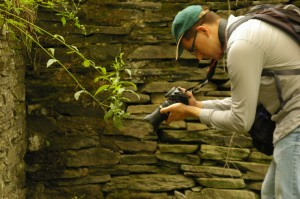 Zachary Stockmal photographs details of the Dennis Farm barn stone wall during the summer of 2013. (Photo by Justin Wu.)