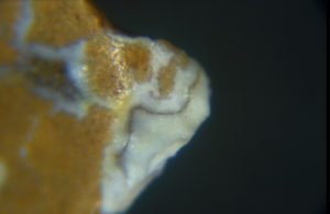 Example of microscopic usewear polish on a jasper graver from a site in the Middle Atlantic Region.
